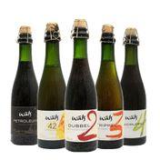 Kit Wäls Cervejas Especiais