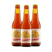 Kit Cerveja Barbarella Fruitbier Maracujá 355ml - 3 Unidades