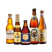 Kit Cervejas Especiais Europeias