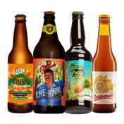 Kit Degustação Cervejas Frutadas
