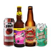 Kit Degustação Cervejas Sour