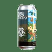 Cerveja Satelite Onde Esta o Gole Sour IPA com Maracujá 473ml