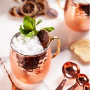 Kit para Moscow Mule com Vodka Absolut (04 drinks)